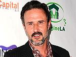 David Arquette: 'I'm Good at Diaper Duty' | David Arquette