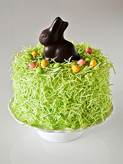 Chocolate Bunny Easter Cake Recipe