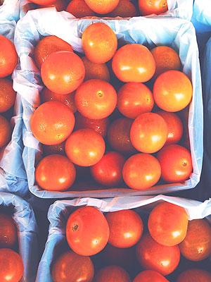 Alex Guarnaschelli Sungold Tomatoes