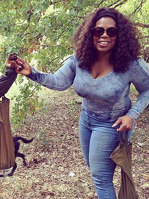 Oprah Truffles