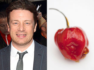 Jamie Oliver Hot Pepper