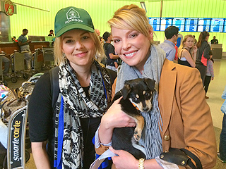 Ali Fedotowsky Arrives in Los Angeles with Two Rescue Dogs from Sochi