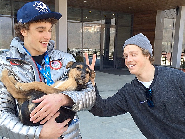 See the 10 Most Popular Instagram Photos by Sochi Olympians