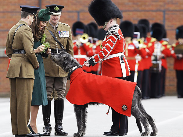 See Prince William and Kate All Decked Out for St. Patricks Day
