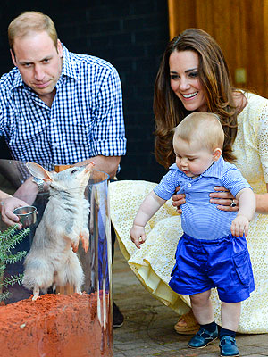How Prince George, Nature Lover, Is Already Helping Endangered Animals