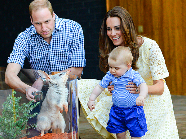 Awww! Prince George Meets Bilby George on Easter Trip to Zoo