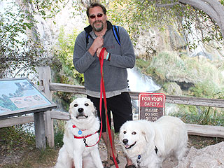 Man to Walk 2,000 Miles with His Pups for Dog Cancer Awareness
