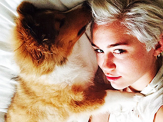 Meet Miley Cyrus's Adorable New Pup