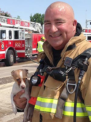 Texas Firefighter Brings Dead Dog Back to Life – Using  CPR!| Real People Stories, Real Heroes