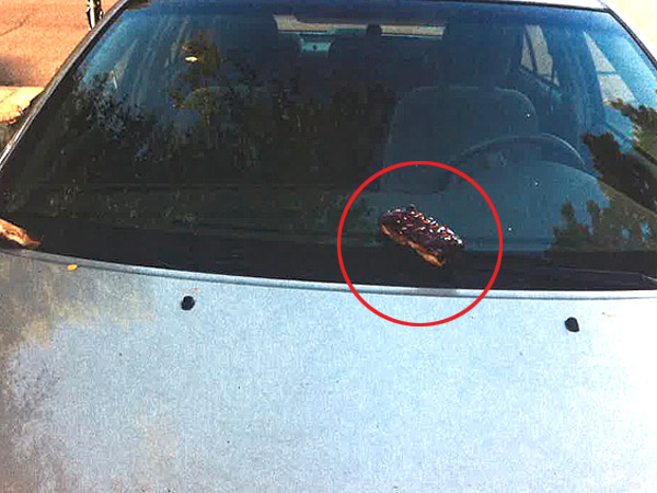 Weirdest Crime Ever? Vandals Hit Cars with Donuts