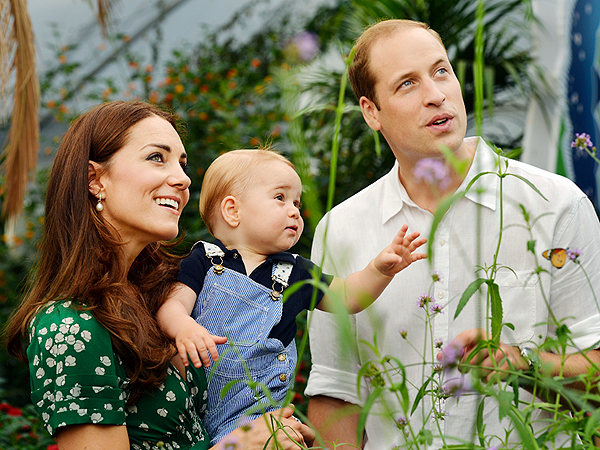 Prince George Is Fascinated by Butterflies in Adorable New Photos