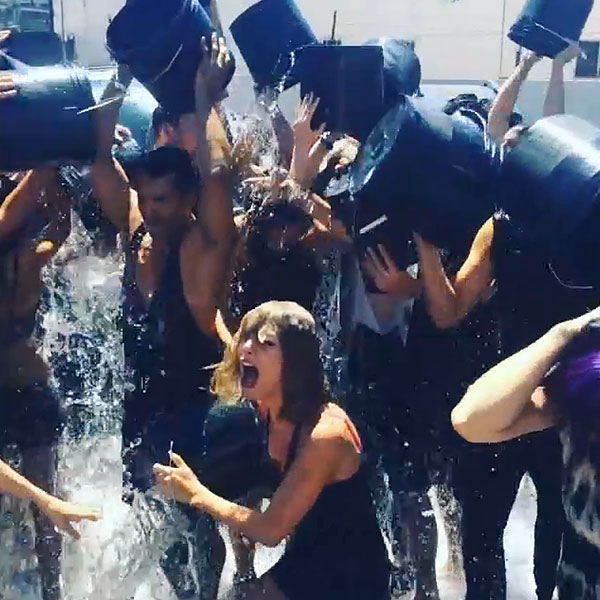 taylor swift 600 Pamela Anderson Declines Ice Bucket Challenge, Citing ALS Animal Testing