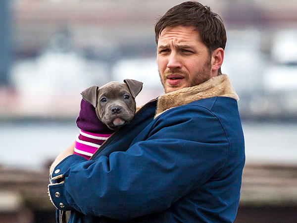 Exclusive Clip of Tom Hardy and Puppy from The Drop ...