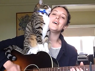 Cat 'Helps' Musician Owner Through Song (VIDEO)