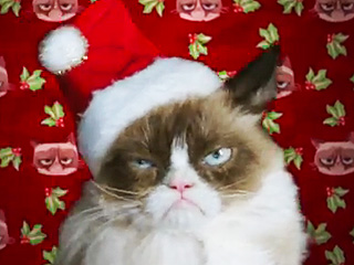 Is Grumpy Cat Really Worth $100 Million – and Will She Smile?
