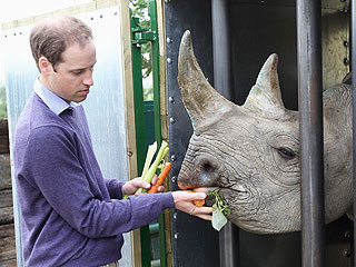 How Prince William Came to Love Wildlife