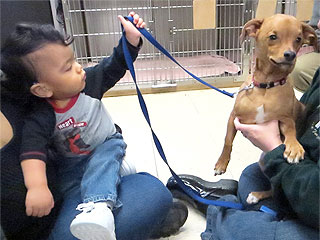 The Daily Treat: Dog Brings Joy to Children with Same Brain Condition | Animals & Pets, Cute Pets, Pet News, Unusual Pets