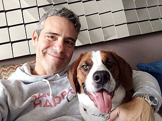 You'll Never Guess Whom Andy Cohen Is 'Madly in Love' With | Animals & Pets, Stars and Pets, Pet News, Andy Cohen