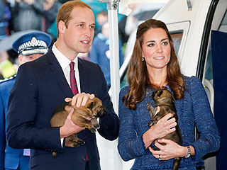 PHOTOS: William & Kate Tap into Their Animal Instincts Down Under