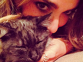 Nikki Reed Adopts Another Pet – Can You Guess What She Took Home This Time?