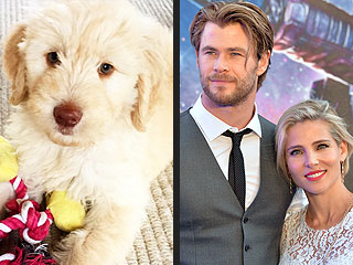 Chris Hemsworth Is Officially the Sexiest Puppy Dad Alive