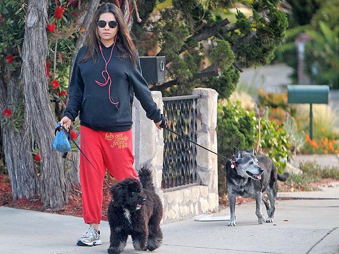 Η εγκυμονούσα Μίλα με τους σκύλους της...