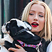 Stars and Their Pets: Iggy Azalea's Main Squeeze