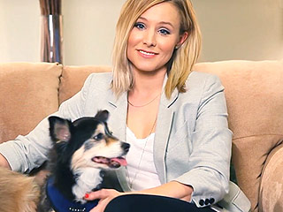 An Editor's Take: Inside Hollywood's Infatuation with Rescue Dogs | Kristen Bell