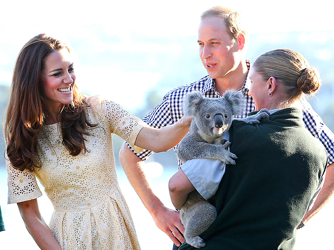 KOALA-TY TIME photo | Kate Middleton, Prince William