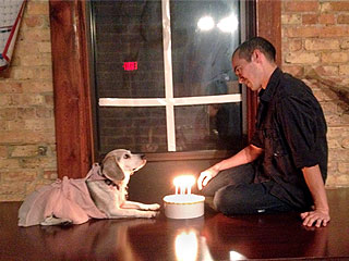 Man Recreates Romantic Movies with Dog as Leading Lady | Sixteen Candles (Flashback Edition)