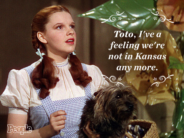 toto quote