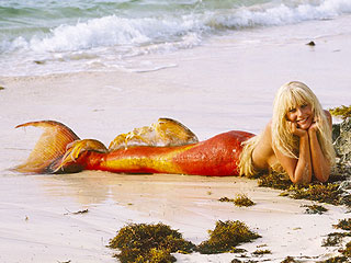 Splash Turns 30: 8 Memorable Mermaids from Pop Culture | Splash, Daryl Hannah, Tom Hanks