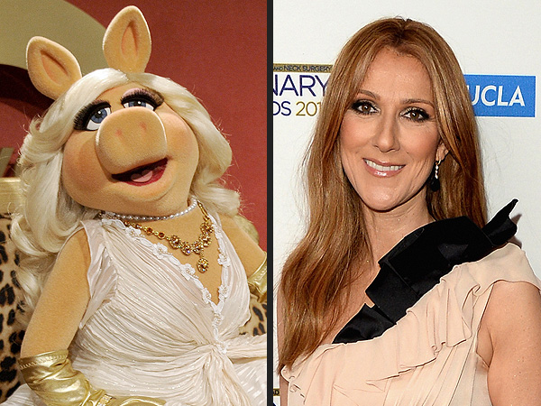 Céline Dion and Miss Piggy Could Perform Together at 2015 Oscars | The Muppets, Muppets, Celine Dion, Miss Piggy