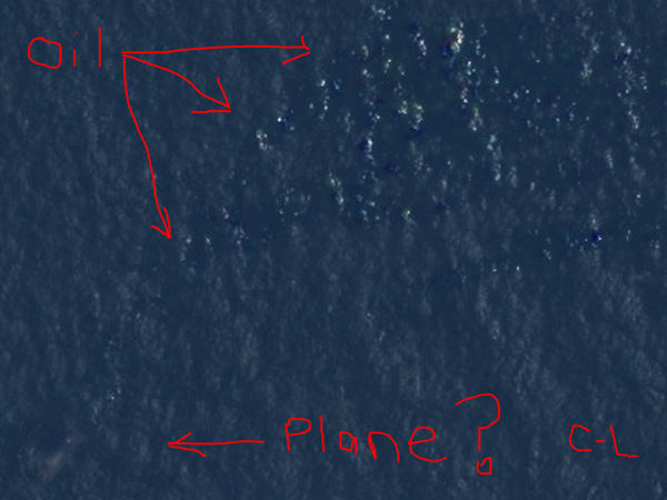 Courtney Love Searches for Missing Malaysia Airlines Flight 370 Plane  Malaysia Airlines Flight 370, Planes, Courtney Love