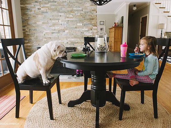 dog girl 2 600x450 PHOTOS: A Girl & Her Bulldog Will Teach You About Family