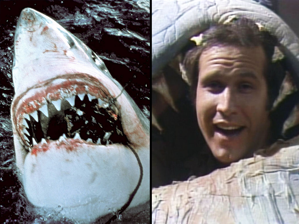 For Shark Week, We've Ranked Every Pop-Culture Shark