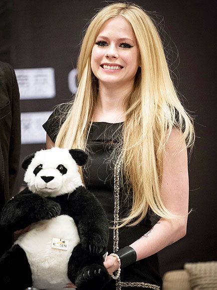 BEAR-Y CUTE photo | Avril Lavigne