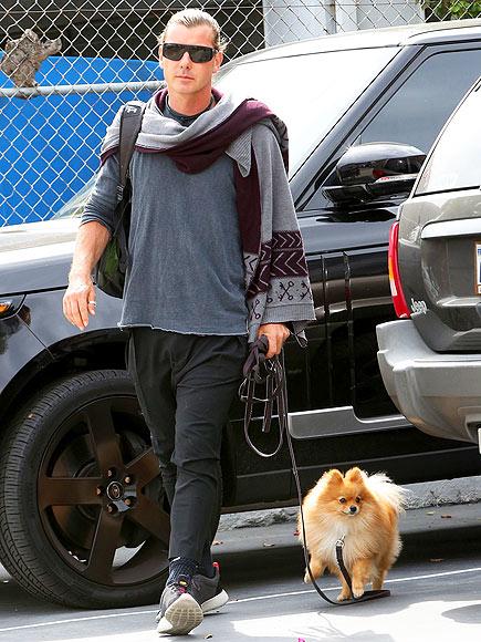 DOGGY DAYCARE photo | Gavin Rossdale