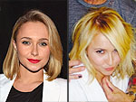 Two Famous Blondes Get Fresh New Cuts for Summer – Guess Who! | Hayden Panettiere