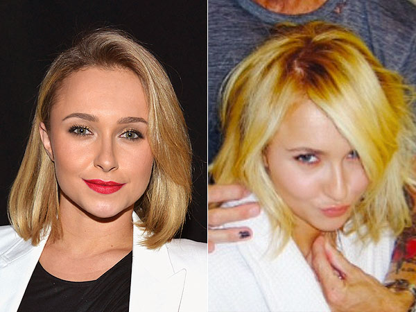 Hayden Panettiere Short Hair