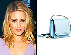 I Really Love My: Dianna's Bag & More!