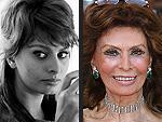80 Years of Beauty: See Sophia Loren's Changing Looks!