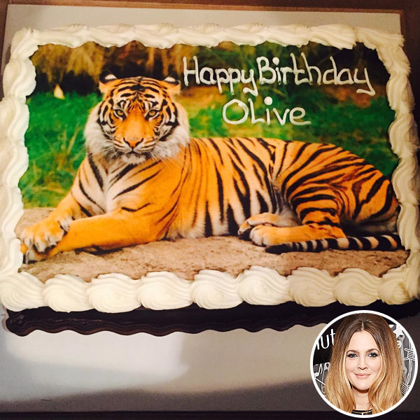 Drew Barrymore daughter Olive birthday cake