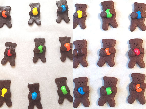 Nut-Hugging Teddy Bear Cookie Recipe: We Tried It Out ...