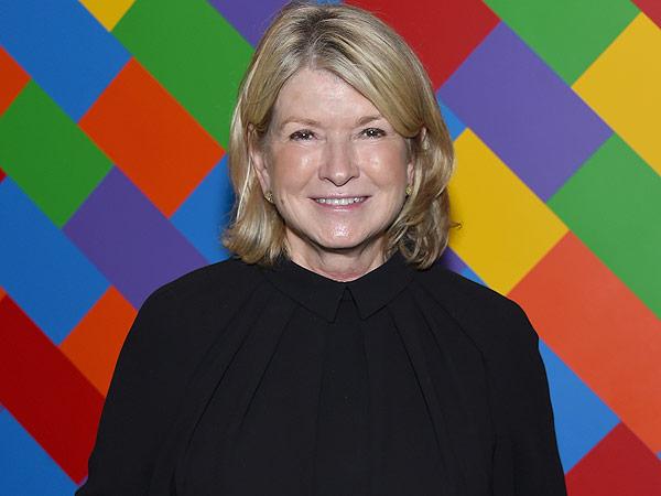 Martha Stewart On Kmart We Should Have Turned It Into