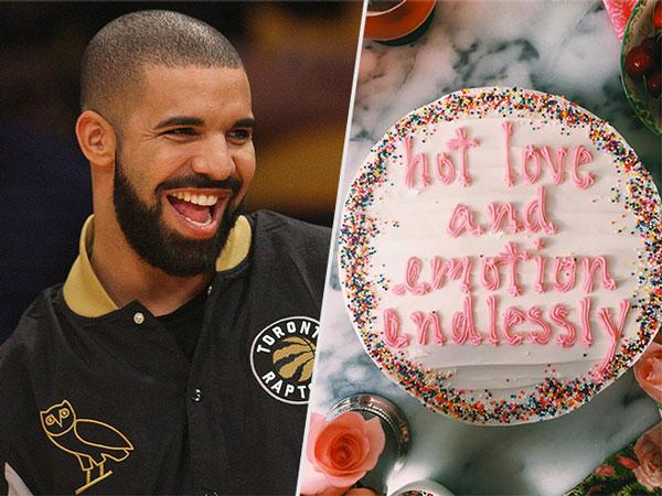 Drake on Cake Instagram