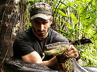 Don't Expect an Eaten Alive Sequel, Says Discovery Channel Chief