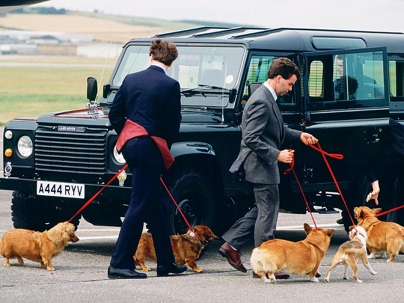 What Breed Of Dog Does The Queen Of England Have