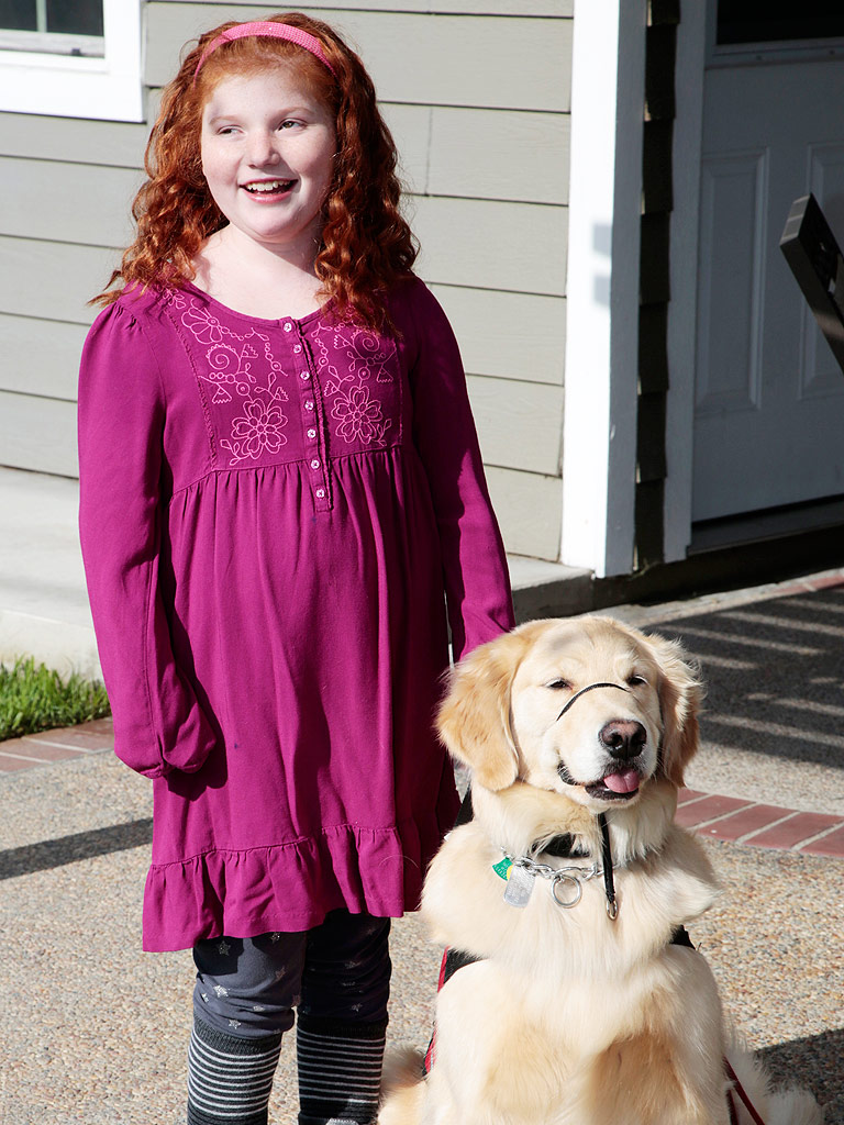 How To Train A Service Dog To Detect Seizures