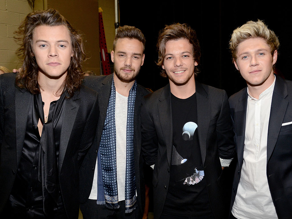 One Direction Not Breaking Up, Will Have Solo Careers Like Rolling Stones